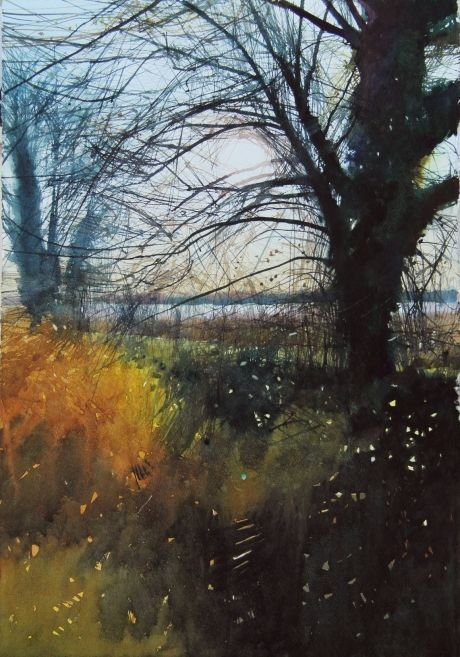 Wetland Sun | David A Parfitt RI | Royal Institute of Painters in Water Colours 2016 | Mall Galleries
