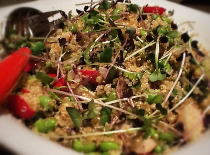 Avocado, quinoa and fava bean salad Recipe two for this week. A tasty ...