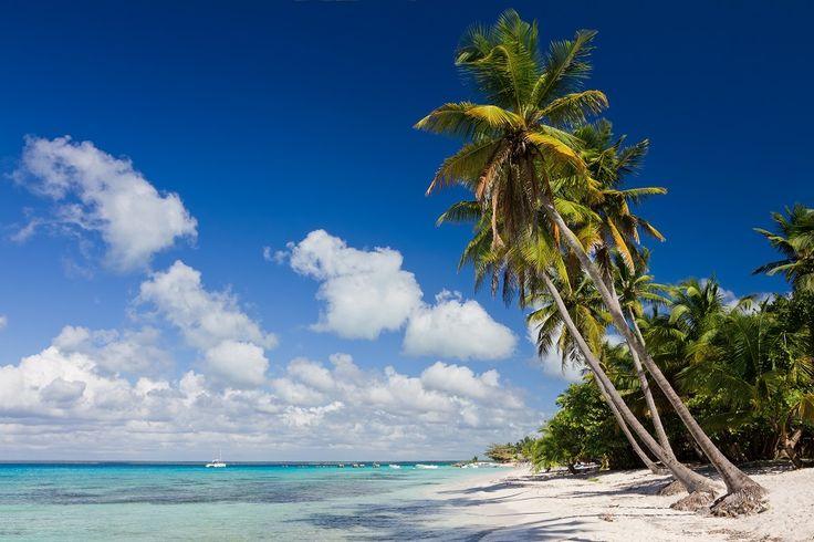 Artikelbild_Karibik_Dominikanische_Republick_Strand_Palmen