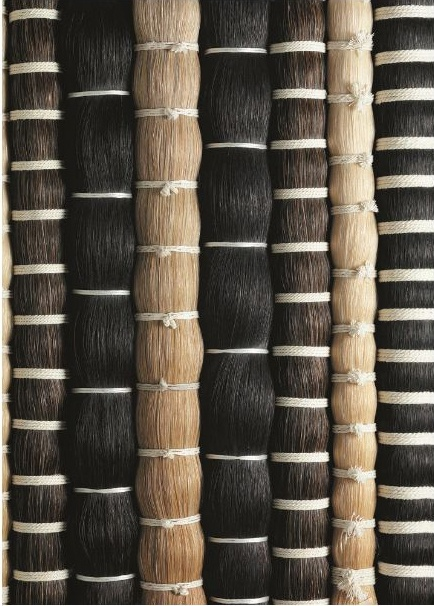 Horse hair one of the most healthy and beautiful