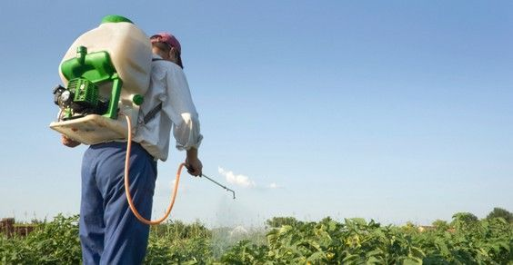 Glifosato e cancro: gli agricoltori eroi che hanno fatto causa a Monsanto