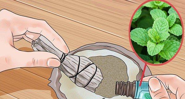 Comment utiliser l'huile essentielle de menthe poivrée contre l'addiction au sucre !
