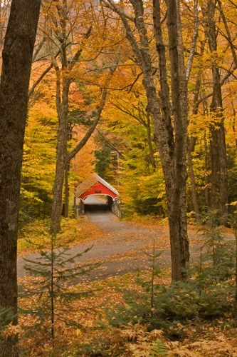 Landscape Photography Tips: New Hampshire Fall Foliage