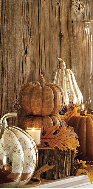 Fall Display!!! Bebe'!!! Love this wonderful fall pumpkin display!!!