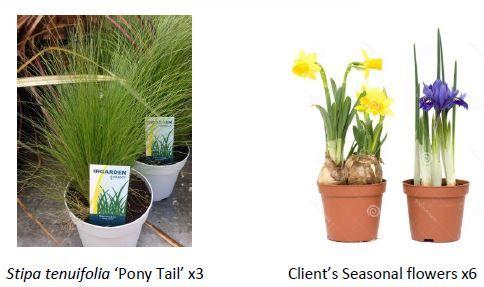 Seasonal Planting Combination (Ref. Img) - London ©Deepthi Martinet ©DM Design Studio