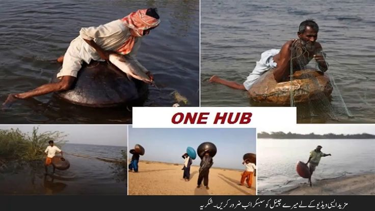 FEW FISH HUNTING METHOD IN PAKISTAN URDU/HINDI VIDEO