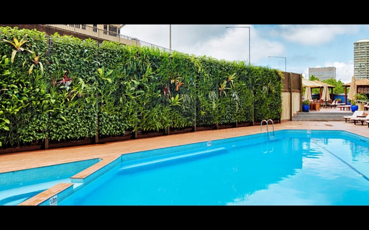 Sydney 39 S Largest Outdoor Heated Hotel Pool At The Four Seasons Hotel Sydney Four Seasons Hotel