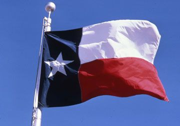 Do You Belong in the Great State of Texas?