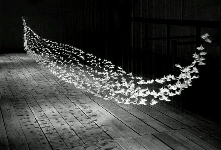 Isa Barbier feather installation