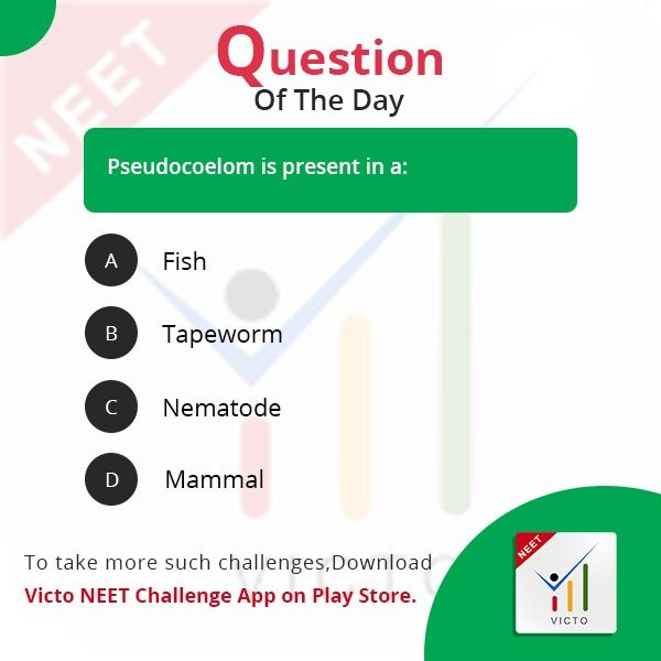 Answer this VICTO Challenge question, download the App and