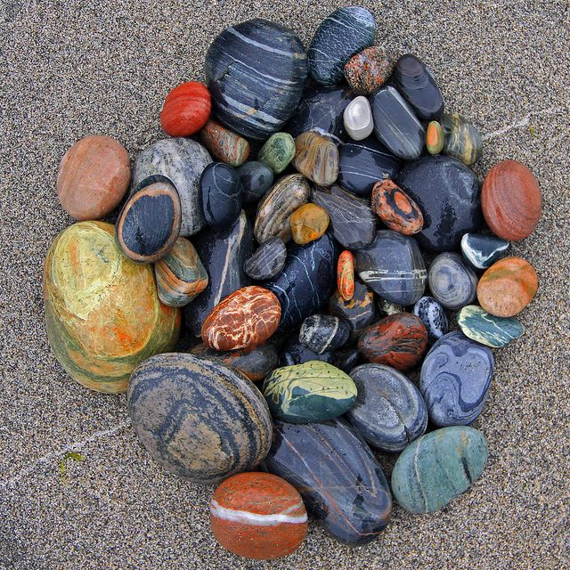 A beautiful rock collection, I love collecting rocks on the beach and streams. It's the best souvenir!