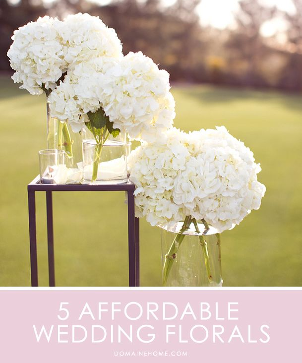5 Affordable Flowers For Your Wedding // flower arrangements, bouquets, centerpieces. This is great to know !