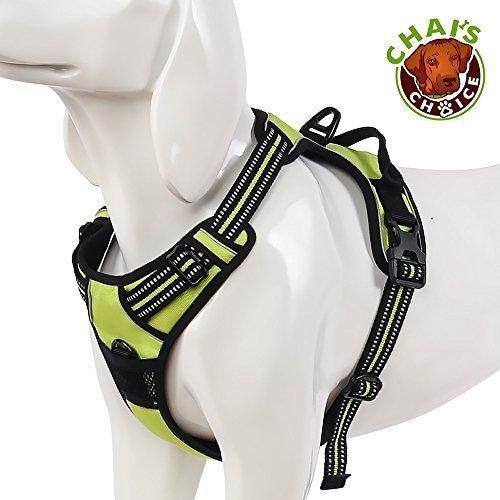 Chai's Choice Pet Products Best Front Range No-Pull Dog Harness Medium Green