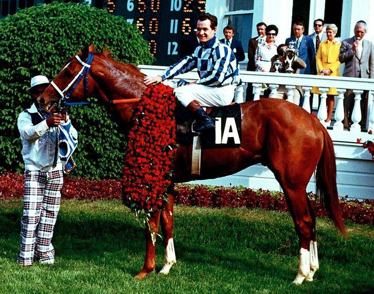 secretariat | En 1999, ESPN nombró a Secretariat en el puesto 35 entre los mejores ...