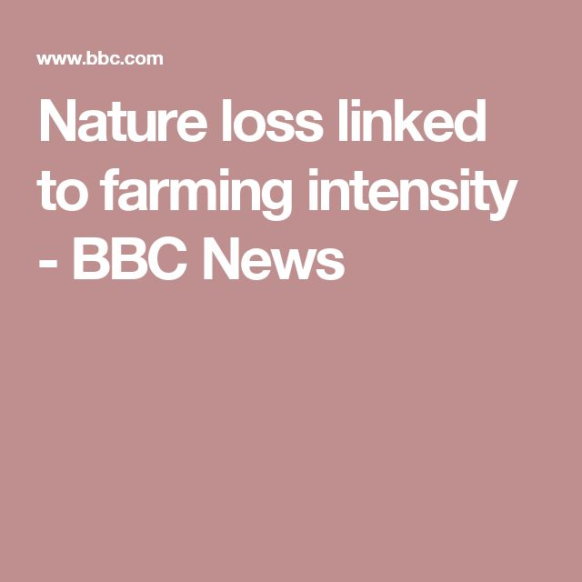 Nature loss linked to farming intensity - BBC News