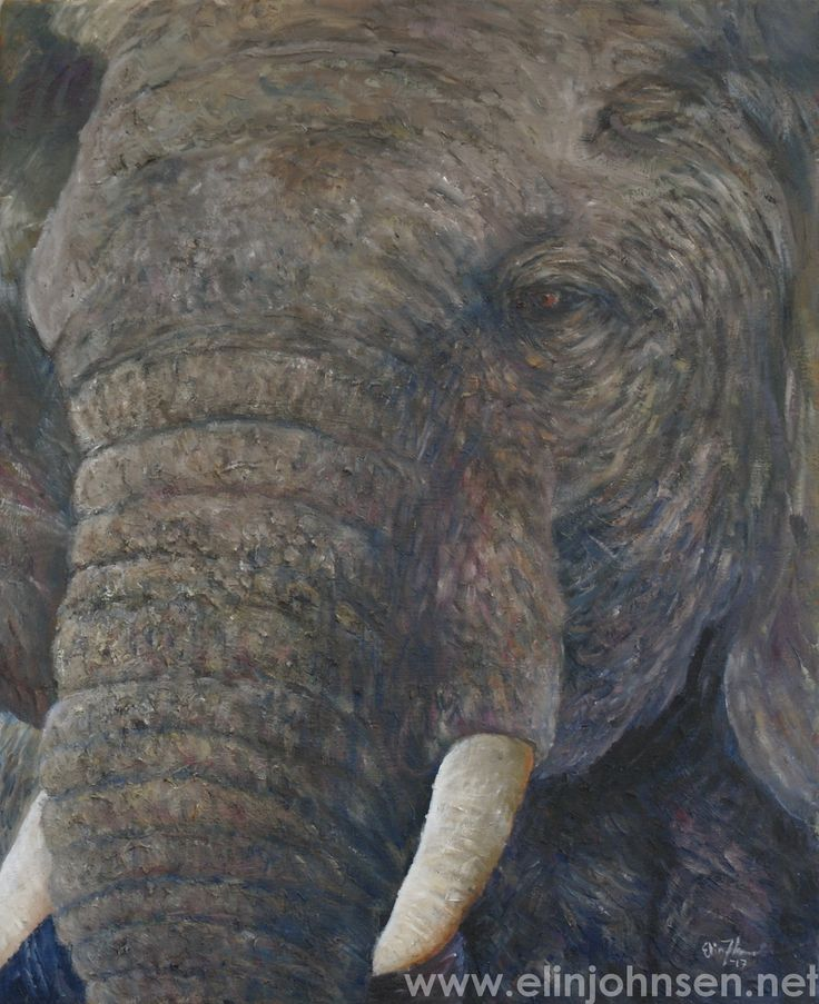 Elephant, oil on canvas 2017. 46x38cm.