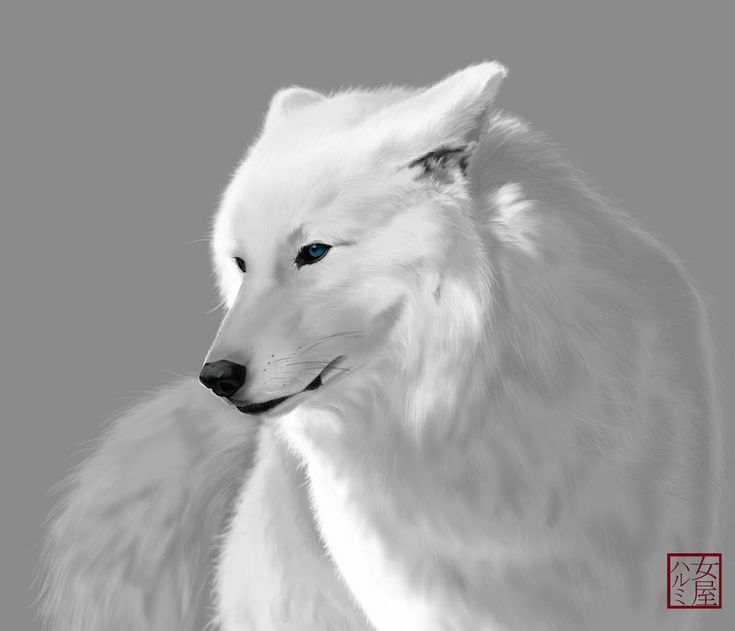 Anime white wolf with green eyes