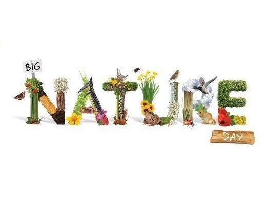 Today Is World Nature Conservation Day Nurturing Adventure Tranquil Uplifting Rejuvenate Energizin Place Card Holders Nature Conservation How Are You Feeling