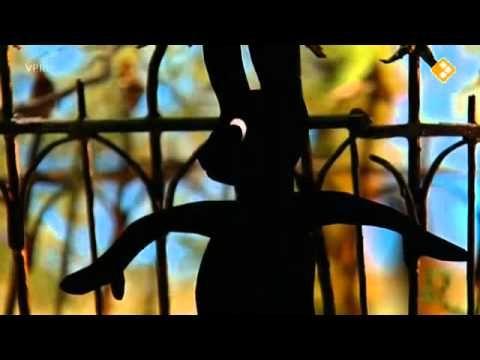 Verhalen van de boze heks:48. Het heksenhek