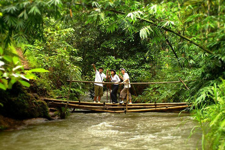 Ayung river trekking