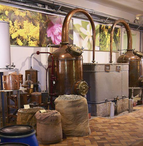 Distillation - Visit of Fragonard - parfumeurs par excellence