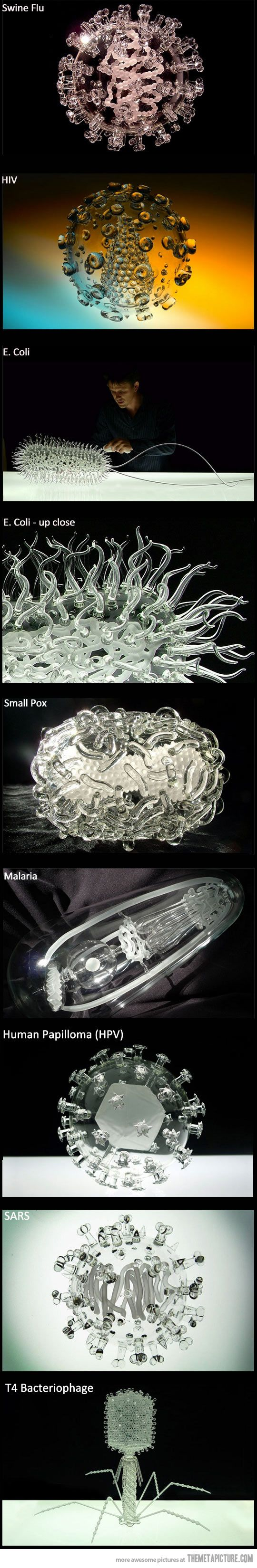 Glass replicas of harmful viruses… these are way awesome! I want them for my house!