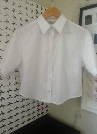 Biała krótka koszula typu basic