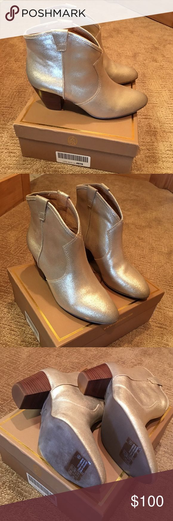 NIB gorgeous Ash boots NIB Ash boots gold size 40 (US 10). Come with box and dust bag Ash Shoes Ankle Boots & Booties