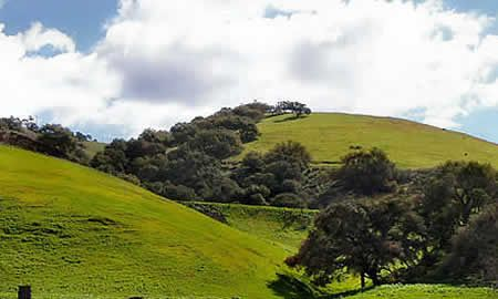 Santa Maria is located within easy driving distance of many central coast attractions.
