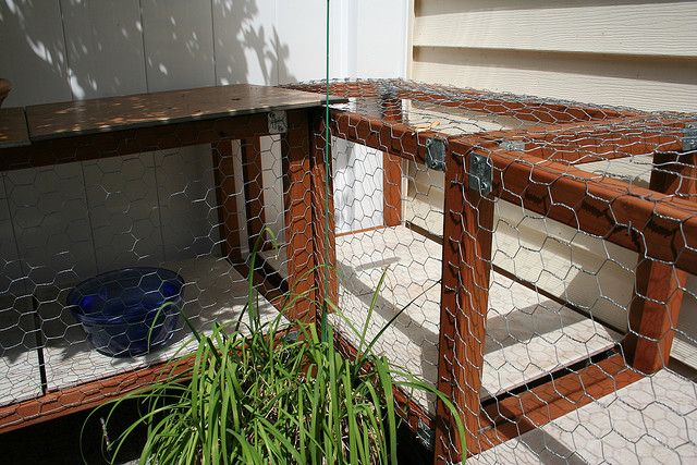 17 best images about cat enclosures on pinterest cat for Having an indoor cat