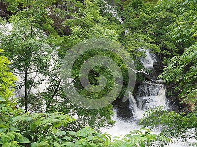 Taken on a rainy day in July at Arklet Falls, which run into Loch Lomond at Inversnaid. In Trossachs National Park.