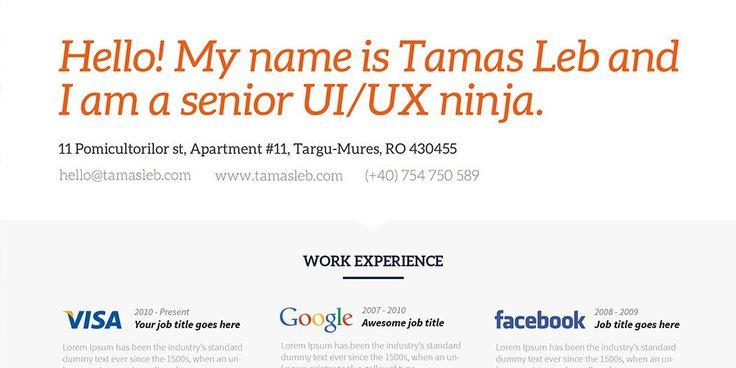 71+ Free Visual Resume Templates Free Functional Resume Template - visual resume templates