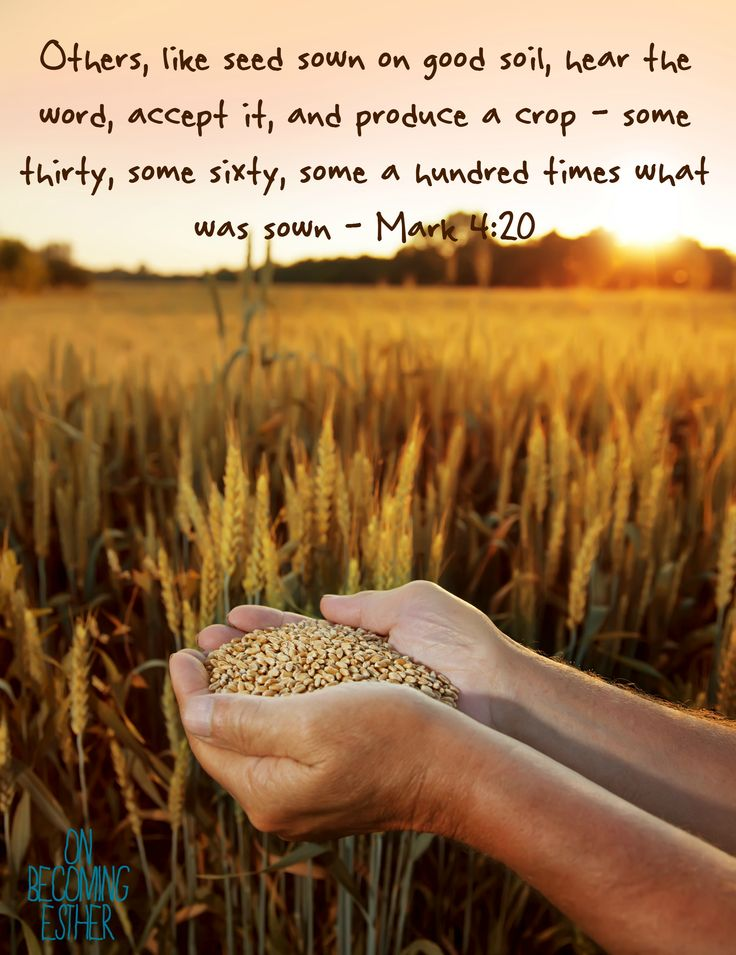 Mark 4:20, The parable of the sower