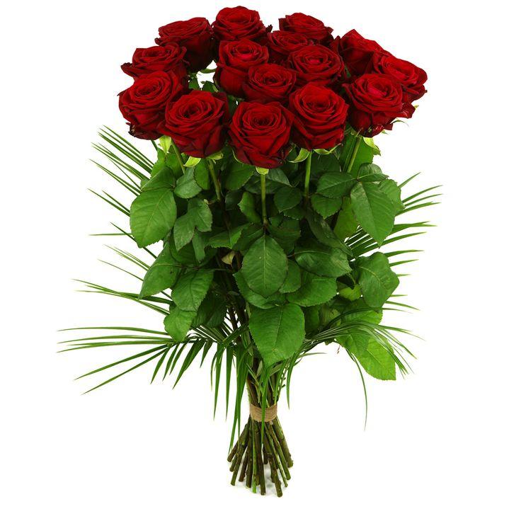 Lange rode rozen  Rode rozen zijn de meest verkochte bloemen van de wereld. U kunt hier zelf aan geven hoeveel rozen u precies wilt laten bezorgen. Afgebeeld: ongeveer 30 lange rode rozen. Het soort rode rozen kan iets afwijken van de foto i.v.m. de voorraad op dat moment.  EUR 25.00  Meer informatie  http://ift.tt/29qEkrg #bloemen