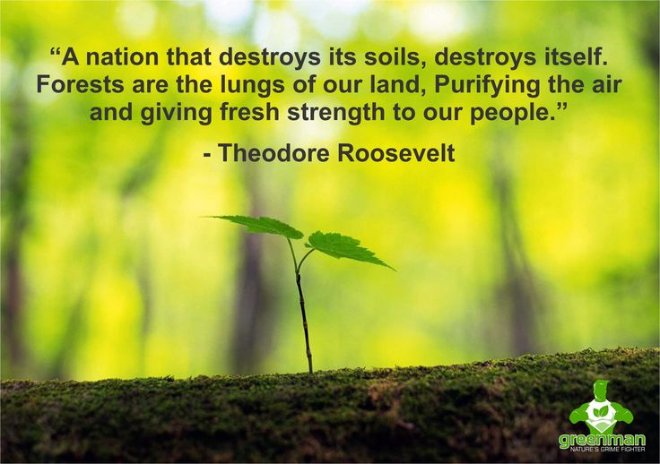 Like and share if you agree!  #GreenmanInternational #EcoWarrior #EcoFriendly #Green #Environment #ClimateChange #Nature #SaveThePlanet