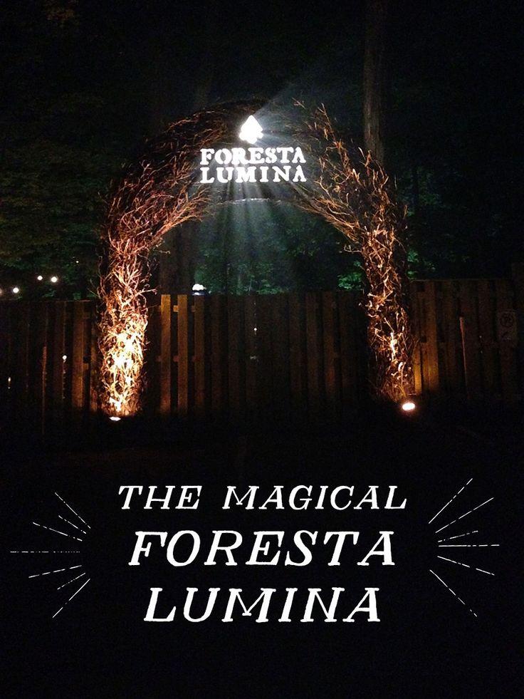 Set Forth Studio // The Magical Foresta Lumina