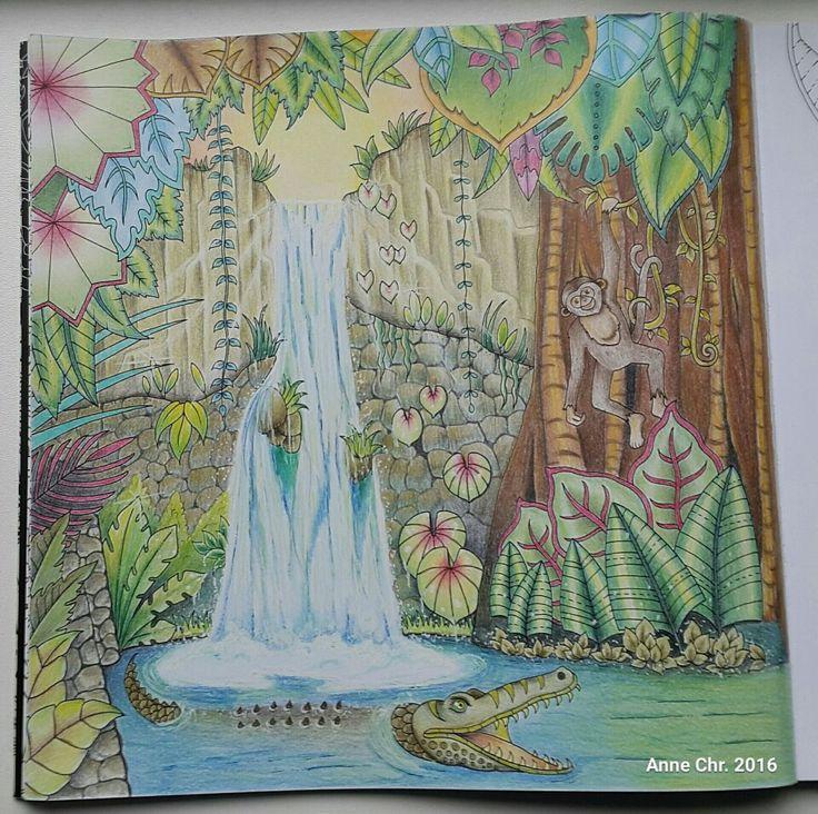 Johanna Basford, Magic jungle. My choice of colours.