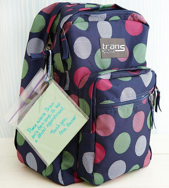 Help yourself, your child, and his or her teacher keep track of important papers. A clear zipper bag connected to a backpack with a carabiner makes notes and field trip money easy to spot.