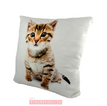Coussin chat Taby | acceuil