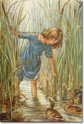 The Lord of the Rushie River - Where the Wild Duck Had Their Homes (Cicely Mary Barker)