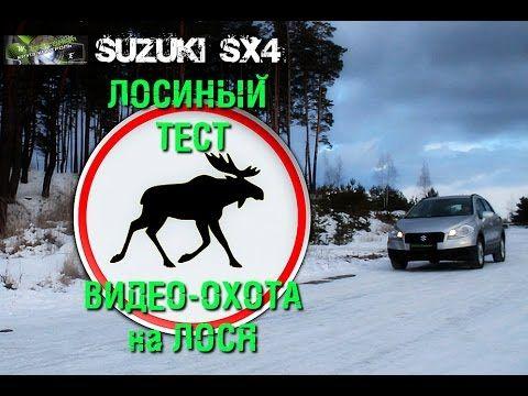 """Лосиный тест или охота на лося? Проект """"Круиз-Контроль"""", атипичный тест Suzuki SX4 AllGrip"""