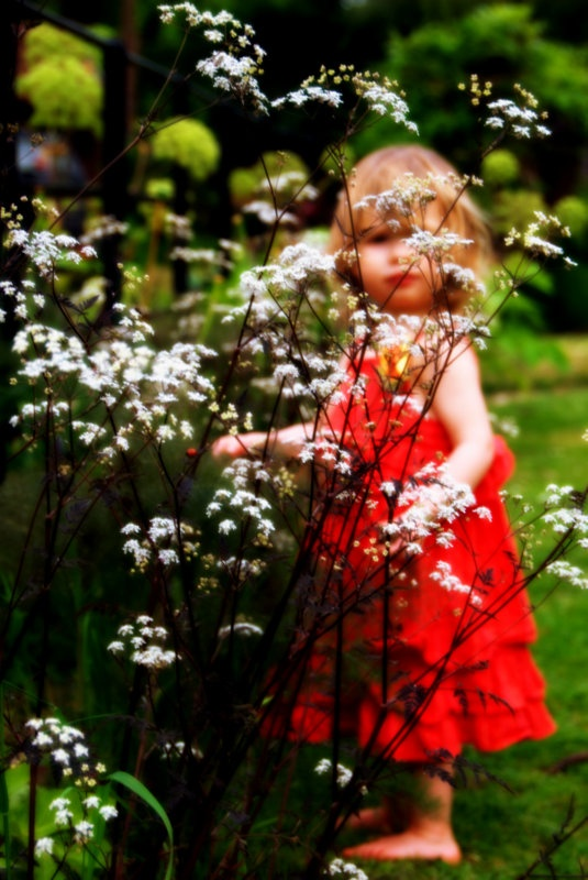 #Gardening  http://www.my-garden-school.com
