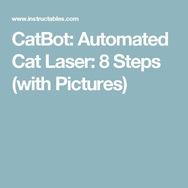 CatBot: Automated Cat Laser: 8 Steps (with Pictures)