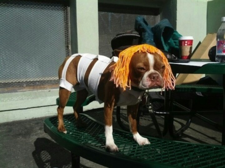 5th Element original cast.  Hahahaha!