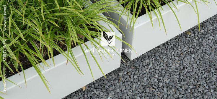 Strakke grote witte plantenbakken met groeblijvend siergrass in vak met split