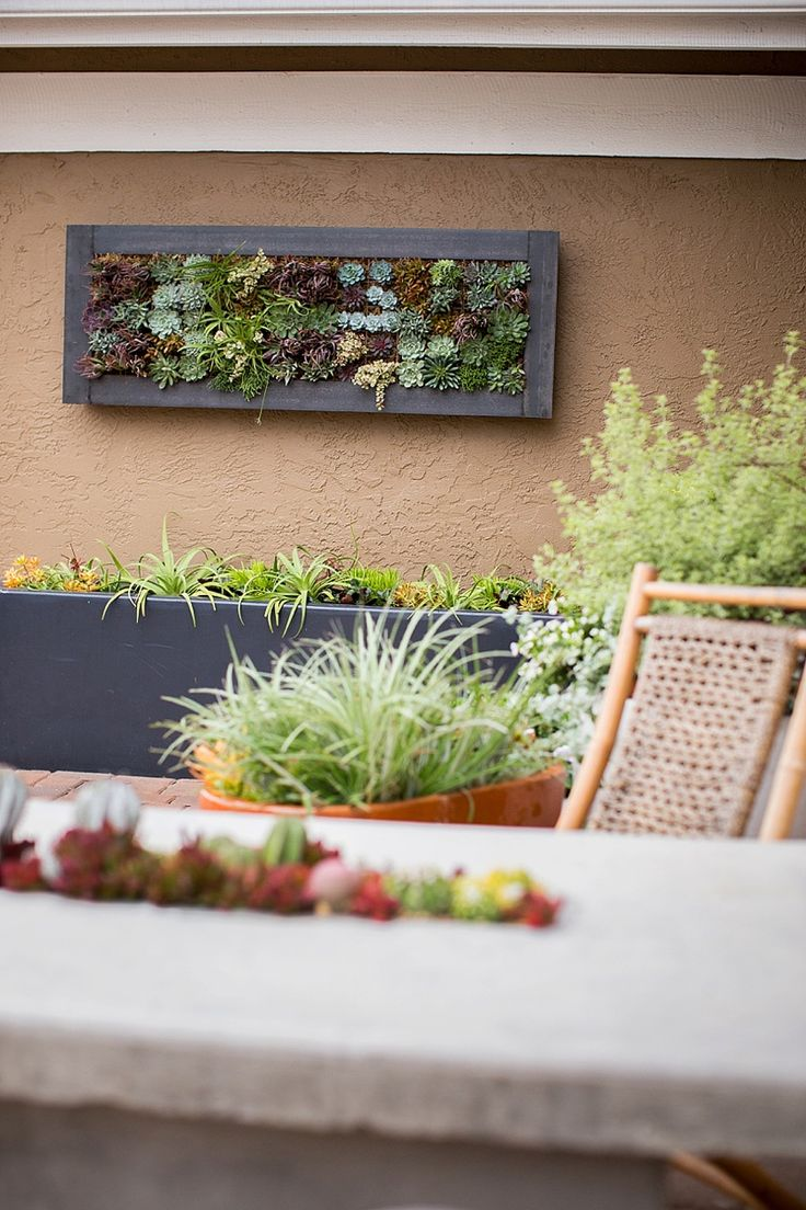 The Ultimate Low Maintenance Low Water No Lawn Front Yard Design Vertical Garden Living Wall