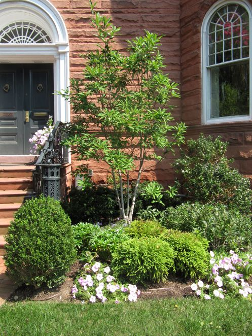 Boxwood landscape designs willow landscape design a for Small corner garden designs