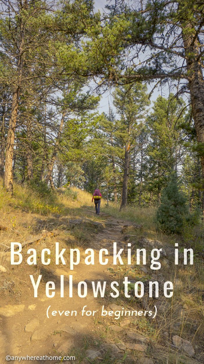 yellowstone national park vacation guide