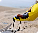 Corexit chemical dispersant used by BP during Gulf oil disaster linked to horrific human injuries