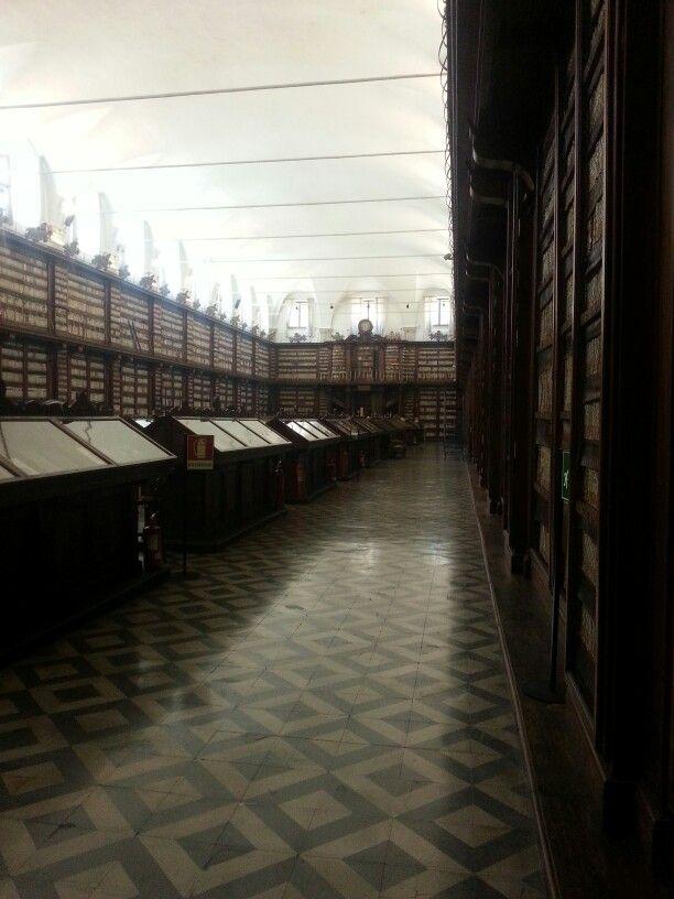 Biblio Casatanense Insula Sapientiae